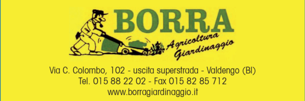 B_Borra
