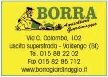 D_Borra